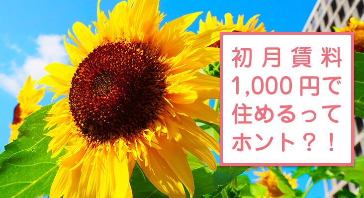 初月賃料1000円で住めるって本当?!