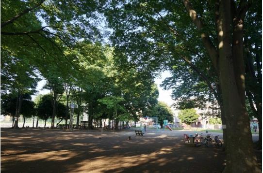 マンション正面はこんな緑多い大きな公園