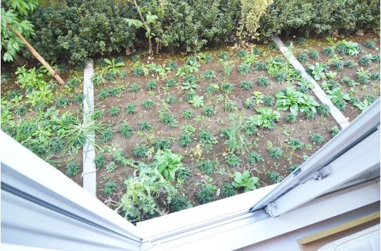 お部屋の前に庭があります