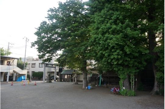 ♥ 二子新地駅近くの神社の境内