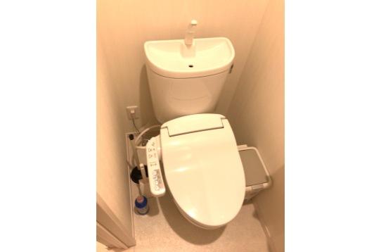 共用部のトイレになります。