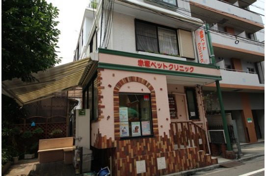 京成小岩駅から徒歩2分の所にペットクリニック。