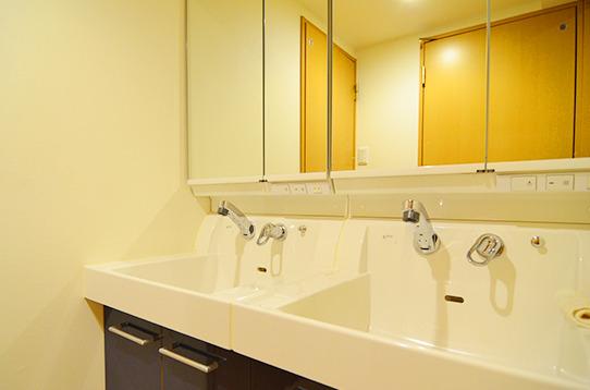 広くて清潔な独立洗面台。
