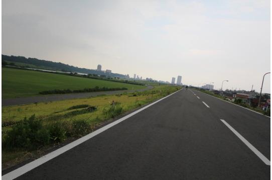 江戸川の河川敷もありお散歩にピッタリ♪