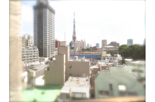 リビングから東京タワーを一望。夜はとても綺麗です