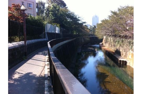 ハウスから北へ歩くと川があります