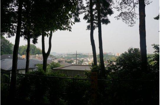 ●浄慶寺境内から見下ろす小田急線線路際方向