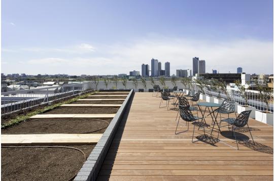 眺めの良い屋上で屋上菜園