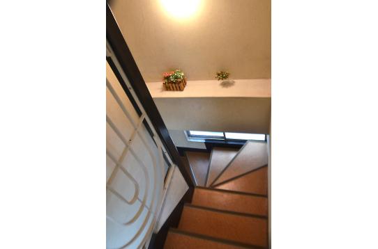 階段横を彩る緑。