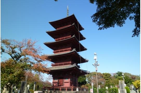 ●立派な五重塔