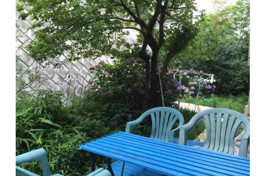 裏庭の様子。