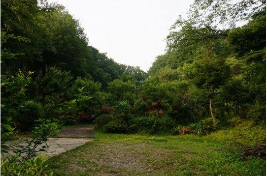 ●浄慶寺の裏山からこんな里山があるなんて驚き!