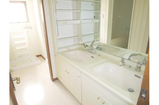 洗面所スペースの様子。