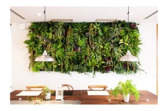建物内にも自然がいっぱい。