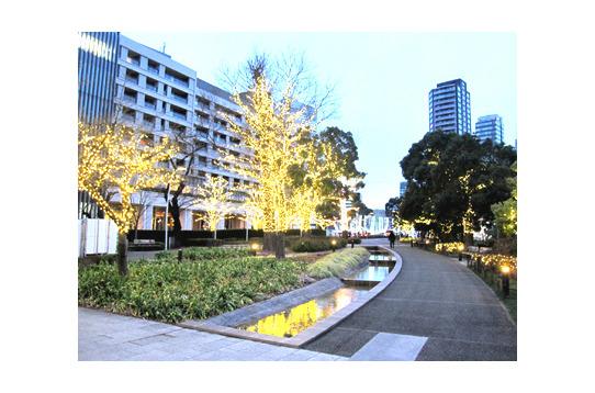 東京ミッドタウンの真裏。檜町公園も徒歩1分!