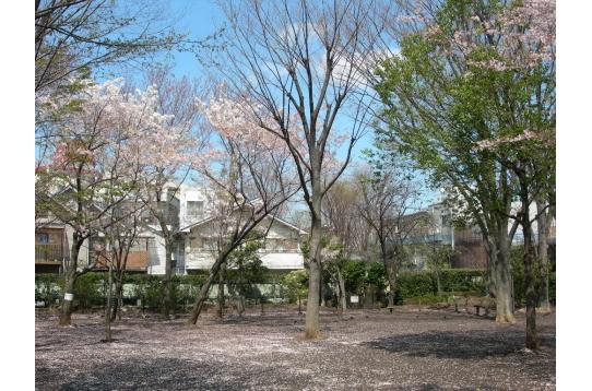 ● ハウスそばの公園
