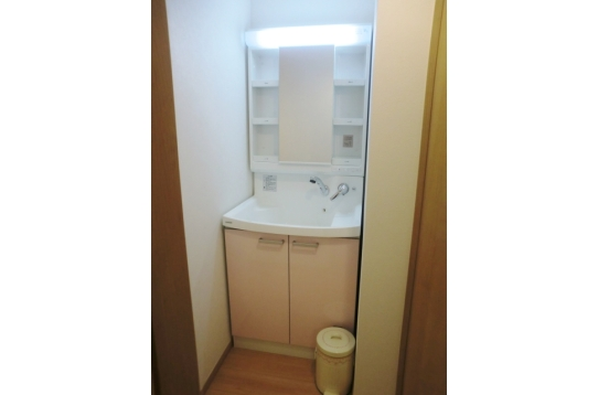 1、2階には大きな洗面台完備(猫ちゃん洗いOK)