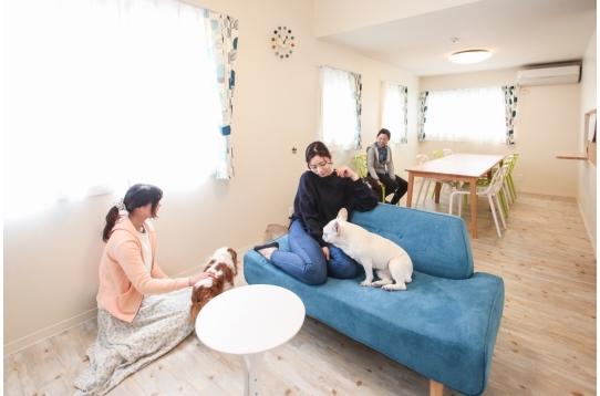犬と暮らす癒しの空間