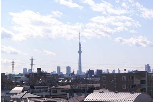 屋上からはスカイツリーが見えます。隅田川花火も・・