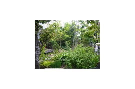 敷地150坪と広々とした庭、菜園スペースもあり