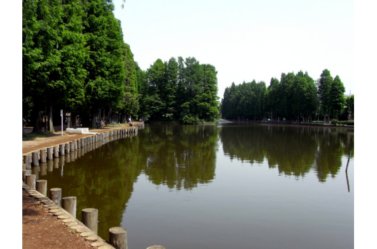 徒歩3分の別所沼公園