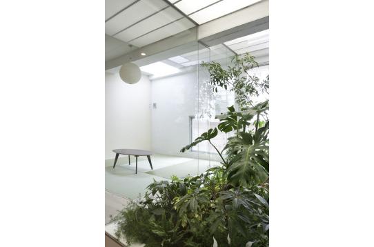 ラウンジ内の室内庭園