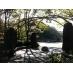 ●野鳥のメッカ、四季の森公園へ徒歩10分。