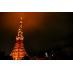 屋上から見える東京タワーは圧巻です★
